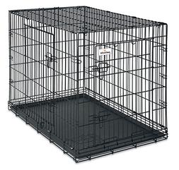 Petmate 38-Inch 2-Door Training Retreats Wire Kennel for Dog