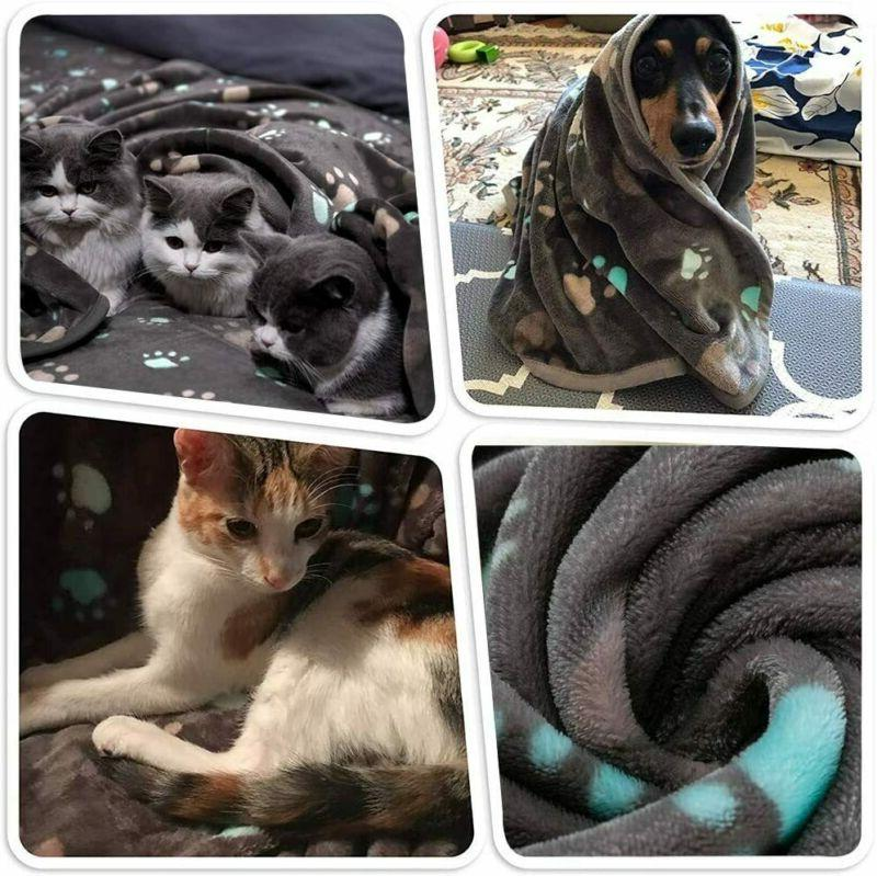 Puppy Kit, Accessories Kit