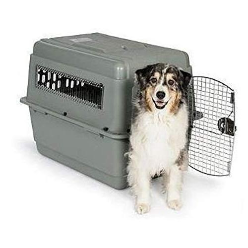 Petmate Kennel Dog Crate Travel Included Sizes