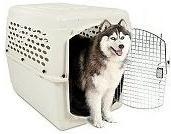 Vari-Kennel Dog Crates