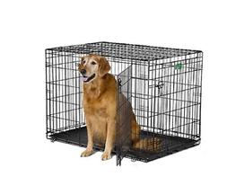Wire Crates For Dogs Large Kennel 2 Door Folding Metal Puppy